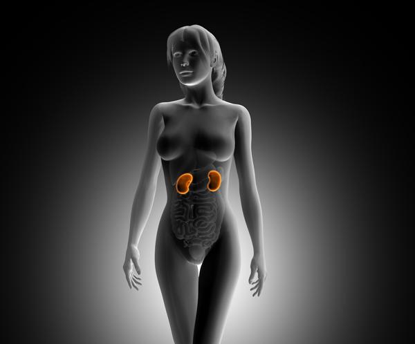hipertensao-nefrologia